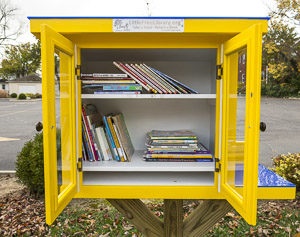 little-library-5576-2